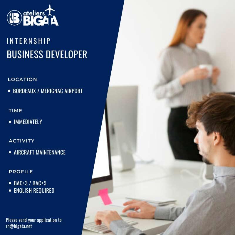 bigata-business-developer-jobs
