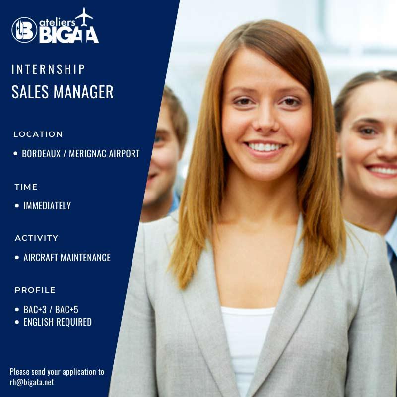 bigata-sales-manager-jobs