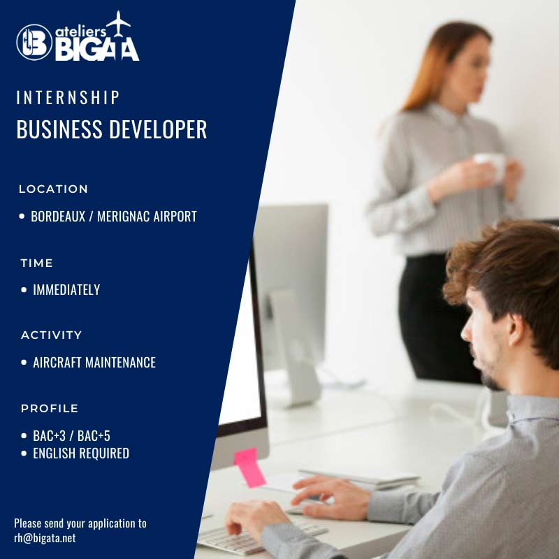 bigata-business-developer-jobs